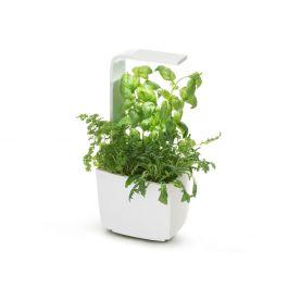 Chytrý květináč TREGREN T3 Kitchen Garden, bílý